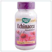 ECHINACEA STANDARDIZED EXTRACT 60 CAPS